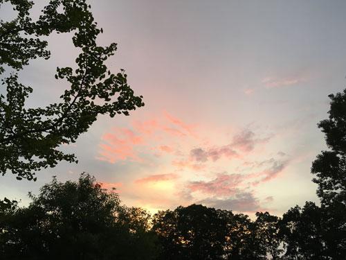 秩父ミューズパークの空
