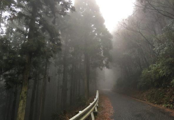 徳島の山中