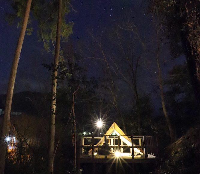 夜空の中のパンダTC