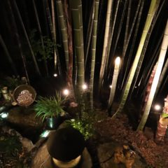 竹やぶにある露天風呂