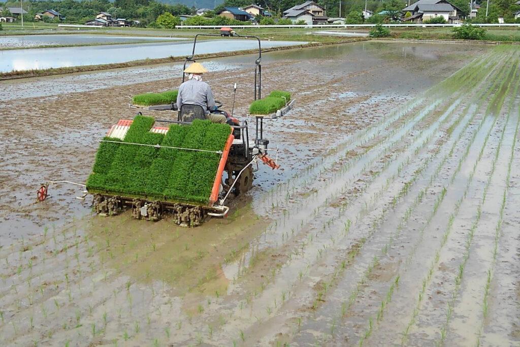 田んぼと耕運機